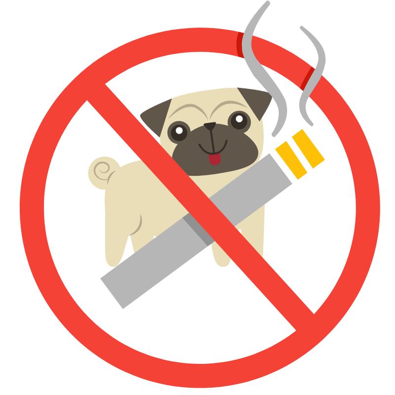 tiere-und-rauchen-verboten-ferienhaus-rakalj-urlaub-fuer-allergiker